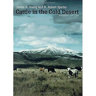 Cattle in the Cold Desert