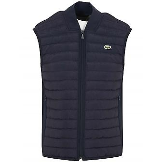 Lacoste Lacoste Navy Blue Quilted Gilet