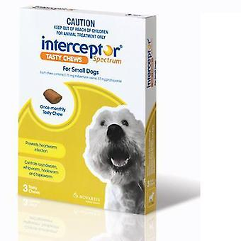 Interceptor Spektrum kleiner Hund 3er pack