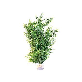 Sydeco naturelles plantes bambou Flexible Maxi 70cm (Pack de 6)