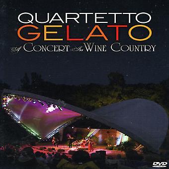 Quartetto Gelato - koncert i vin land [DVD] USA import