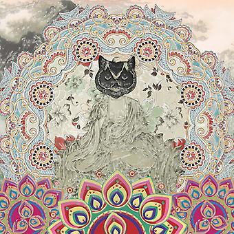 Gypsy Mamba - magnetiske syndromer [Vinyl] USA importerer