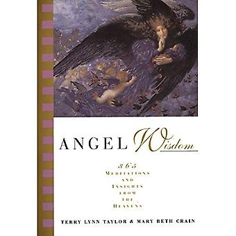 Angel Wisdom: 365 Meditations from the Heavens