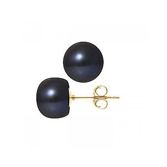 Øreringe af apos; ører kvinders kulturperler af sort ferskvand 10-11 mm og gult guld 750/1000