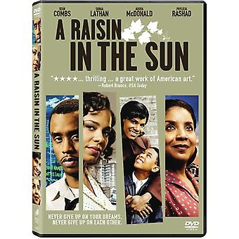 Raisin in the Sun (2008) [DVD] USA import