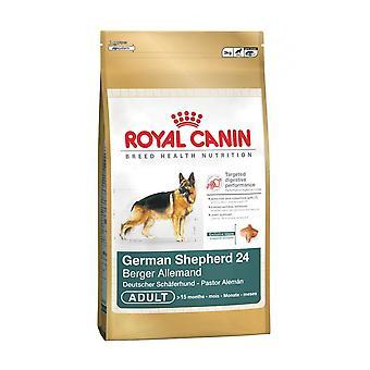Royal Canin Duitse herder gezonde en natuurlijke Adult droog hondenvoer 3kg