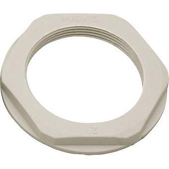 Locknut with flange PG42 Polyamide Light grey (RAL 7035) Helukabel KMK-PA 90718 1 pc(s)