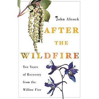 After the Wildfire - Ten Years of Recovery from the Willow Fire by Joh