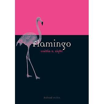 Flamingo by Caitlin R. Kight - 9781780234250 Buch