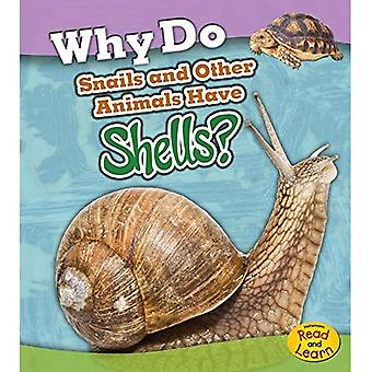 Why Do Snails and Other Animals Have Shells? (Animal Body Coverings)