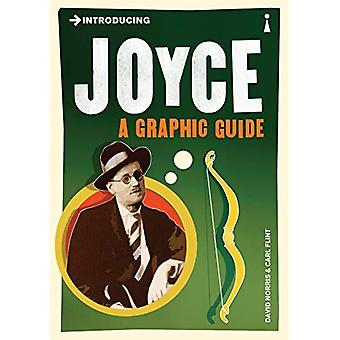 Introducing Joyce: A Graphic Guide (Introducing (Icon Books))