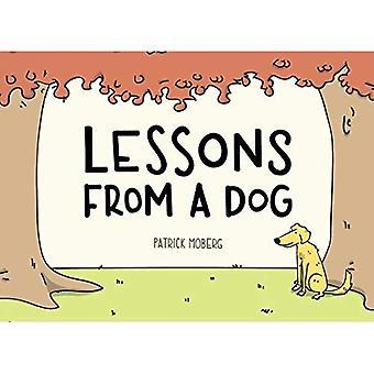 Lessen van een hond