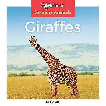Giraffes by Leo Statts - 9781680792010 Book