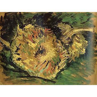 Dos cortan girasoles, Vincent Van Gogh, 21x27cm