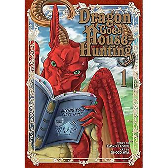 Dragon Goes House-Hunting Vol. 1 (Dragon Goes House-Hunting)