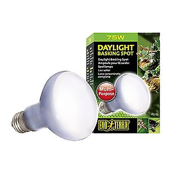 Exo Terra Daylight Basking Spot  Lamp for terrariums