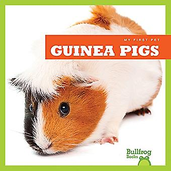 Guinea Pigs (My First Pet)