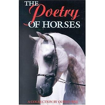The Poetry of Horses: A Collection by Olwen Way