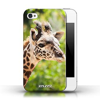 STUFF4 Phone Case / Cover for Apple iPhone 4/4S / Giraffe Design / Wildlife Animals Collection