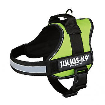 Julius K9 Harness Julius K9 Green Lime (Dogs , Walking Accessories , Harnesses)