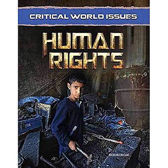 Kritiska frågor: mänskliga rättigheter