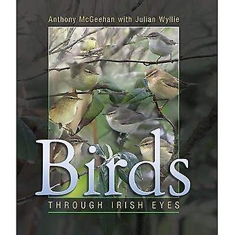 Birds: Through Irish Eyes