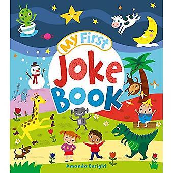 Min första skämt-bok