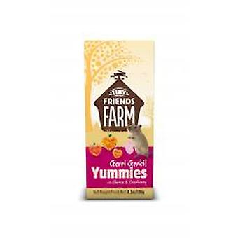 Tiny Friends Farm Gerri Gerbil Yummies With Cheese & Cranberry 120g (Pack of 4)