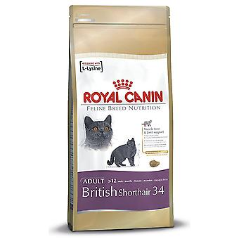 Royal Canin Cat Food Feline Breed British Shorthair