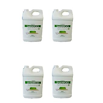 Kirby Vacuum Allergen Shampoo 4 Gallon Case