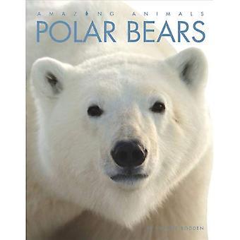 Polar Bears (Amazing Animals (Creative Education Paperback))