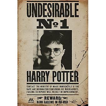 Harry Potter unerwünscht keine 1 Maxi Poster-61x91.5cm