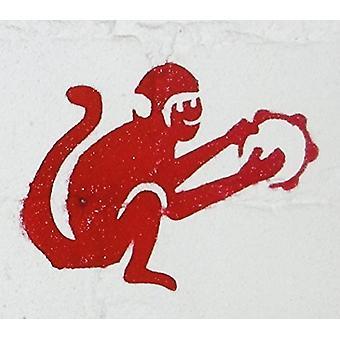 Spinacza naukowców - Quest dla 100-import USA Monkey [CD]