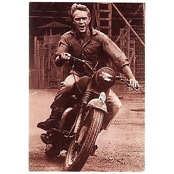 Sporting Display Steve McQueen Great Escape Poster 1