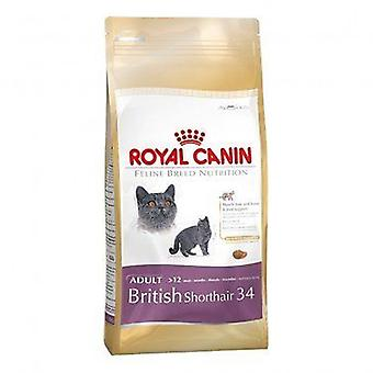 Royal Canin British Shorthair Cat Food Dry Mix 4kg