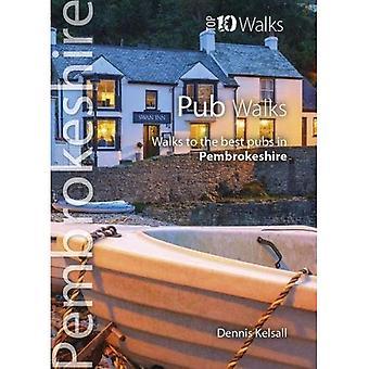Pub Walks Pembrokeshire: Walks to the best pubs in � Pembrokeshire (Pembrokeshire: Top 10 Walks)