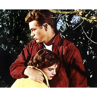 Rebel Without A Cause From Left Natalie Wood James Dean 1955 Photo Print