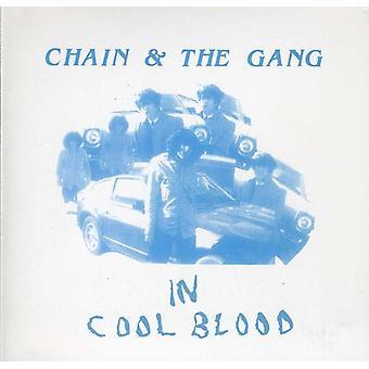 Kæde & bande - i Cool blod [CD] USA importerer