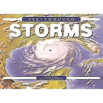 Zien door stormen door Gill Paul - 9780762426621 boek
