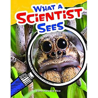 What a Scientist Sees (Grade 4) (Content and Literacy in Science Grade 4)