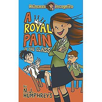 Princess Incognito: En kunglig smärta i klassen (Princess Incognito)