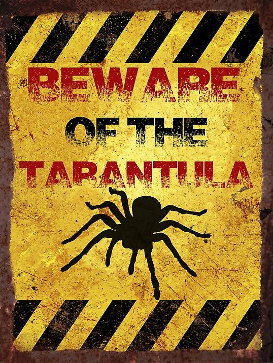 Vintage Metal Wall Sign - Beware of the tarantula