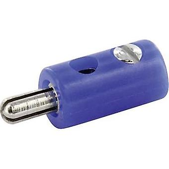 Jack plug Plug, straight Pin diameter: 2.6 mm Blue econ connect HOSBL 1 pc(s)