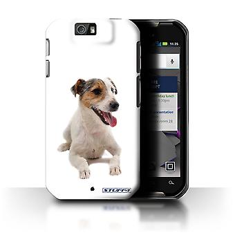 STUFF4 Case/Cover for Motorola IronRock/XT626/Jack Russell Terrier/Dog Breeds