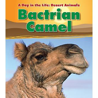 Bactrian Camel (A Day in the Life: Desert Animals) (Paperback) by Ganeri Anita