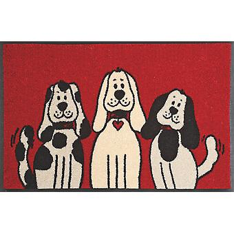 wash + dry three dogs 50 x 75 cm funny doormat