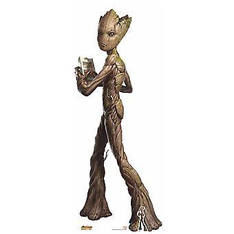 Adolescente Groot Avengers Infinity guerra cartone Lifesize ritaglio / Standee