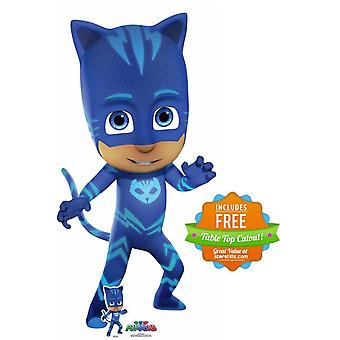 Catboy from PJ Masks Lifesize Cardboard Cutout / Standup