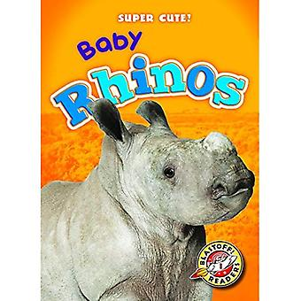 Baby Rhinos (Super Cute!)