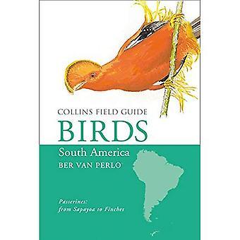 Les oiseaux d'Amérique du Sud: passereaux (Collins Field Guide)